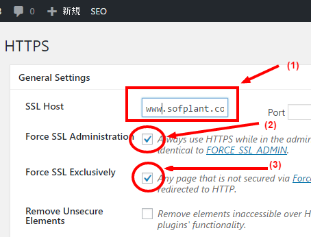 wordpress https setting page